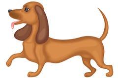 dachshund σκυλί Στοκ εικόνες με δικαίωμα ελεύθερης χρήσης