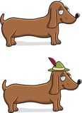 Dachshund Royalty Free Stock Image
