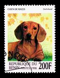 Dachshund (Canis lupus familiaris), Dogs serie, circa 1998. MOSCOW, RUSSIA - NOVEMBER 26, 2017: A stamp printed in Benin shows Dachshund (Canis stock photos