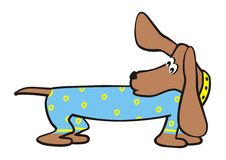 Dachshund and clothes Stock Photo