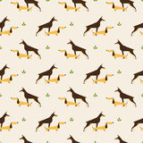 Dachshund and doberman dog pattern Stock Photography
