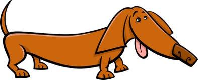 Dachshund dog cartoon illustration Royalty Free Stock Images