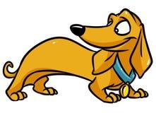 Dachshund dog cartoon illustration Stock Images