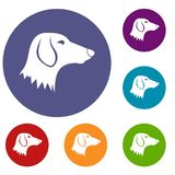 Dachshund dog icons set. In flat circle reb, blue and green color for web Stock Photos