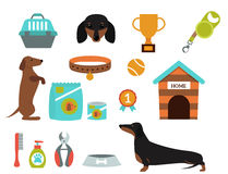 Dachshund dog playing vector illustration elements set flat style puppy domestic pet accessory. Royalty Free Stock Images