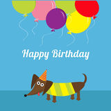 Dachshund dog. Striped shirt. Cute cartoon character. Balloons and hat. Happy Birthday greeting card. Flat design Royalty Free Stock Photography