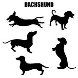 Dachshund dog vector icons Royalty Free Stock Images