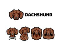 Dachshund with gestures. Dog. Middle finger, muscles, bone, rock, horns. Vector. Dachshund with gestures. Dog. Middle finger, muscles, bone, rock gesture, horns Royalty Free Stock Images