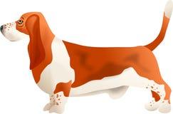 Dachshund-Jagdhund Stockfoto