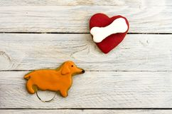 Dachshund likes to eat bones. Composition of Christmas gingerbread. White background Royalty Free Stock Image