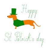 Dachshund St. Patricks Tages Lizenzfreie Stockfotos