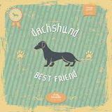 Dachshund vintage typography poster Royalty Free Stock Images