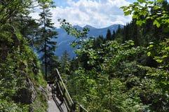 Dachstein山, Silberkarklamm,奥地利 库存照片