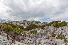 Dachstein-Gebirgslandschaft Stockfotografie