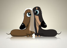 Dachsund Bridal Couple. A Dachsund bridal couple looking lovingly into each others eyes Stock Image
