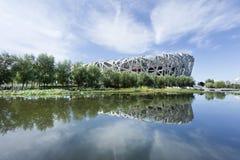 Dacht het Olympische Stadion van het vogel` s Nest in een vijver, Peking, China na Stock Fotografie