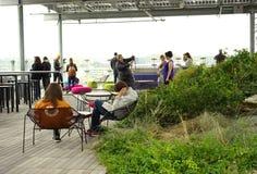 Dachu jawny ogród wielki dla uspołeczniać Fotografia Stock
