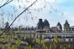 dachy paryża zdjęcie royalty free