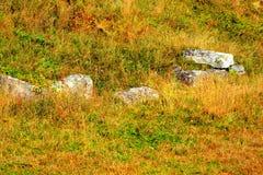 Dacian fortress from Costesti, Transylvania, in the Carpathian Mountains royalty free stock image