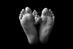 Dad and baby's feet Royalty Free Stock Images