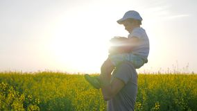 Dad with boy on neck playing into meadow flowers, Happy childhood, daddy and child fooled into blossom in sunlight,. Father played with son on shoulders at stock footage