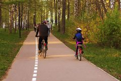 Dad and daughter on bicycles in the Park royalty free stock photos
