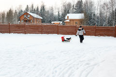 Dad daughter and dog sledding in backyard Royalty Free Stock Images
