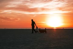 Dad and daughter at sunset on the beach. Walking along the beach, the sky at sunset, dad and daughter are walking Royalty Free Stock Images