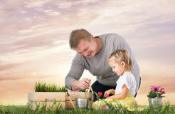 Dad and daughter are thrown flowers Royalty Free Stock Photos