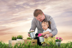 Dad and daughter are thrown flowers Stock Photography