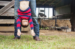 Dad  hanging boy upside down Royalty Free Stock Image