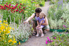 Dad with his little daughter looking at flowers in park Royalty Free Stock Photography