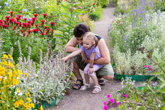 Dad with his little daughter looking at flowers in park Stock Photo