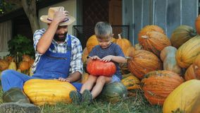 Dad and little son having fun drumming on pumpkins. Dad farmer with his little son have fun together, sit on the grass and drum on pumpkins stock video footage