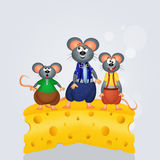 Dad mouse on the cheese Stock Photo