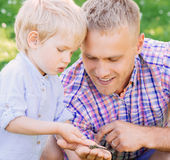 Dad showing a dragonfy to his son Stock Image