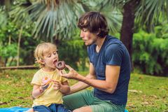 Dad and son are eating a donut in the park. Harmful nutrition in the family royalty free stock photography