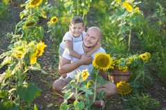 Dad with son hugging in a field of sunflowers. Son embrace his father in a field of sunflowers. Dad with son hugging in a field of sunflowers. Son embrace his Royalty Free Stock Photo