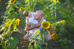 Dad with son hugging in a field of sunflowers. Son embrace his father in a field of sunflowers. Dad with son hugging in a field of sunflowers. Son embrace his Stock Photo