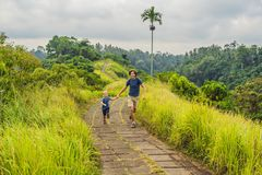 Dad and son tourists in Campuhan Ridge Walk , Scenic Green Valley in Ubud Bali. Traveling with children concept.  royalty free stock photography