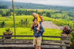 Dad and son travelers on Beautiful Jatiluwih Rice Terraces against the background of famous volcanoes in Bali, Indonesia royalty free stock image
