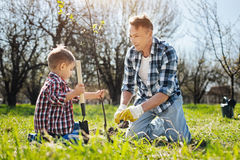 Dad and son working in yard together. Gardening is a recreation. Two male family members working outdoors together, covering over turf with a compost using Royalty Free Stock Image