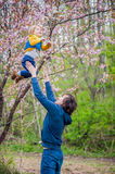 Dad throws up his son in a garden. Dad throws up his son in a flowering garden Royalty Free Stock Image