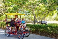 Dad and two little kid boys biking on bicycle in zoo with animal Stock Images