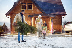 Daddy bring Christmas tree for his little daughter stock images