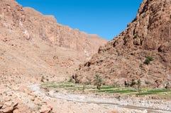 Dades峡谷在摩洛哥,非洲 免版税库存图片