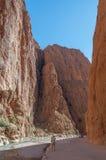Dades峡谷在摩洛哥 库存图片