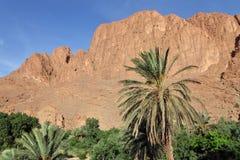 Dades dolina, Maroko obraz royalty free