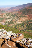The    dades valley in africa ground tree  and nobody Royalty Free Stock Photography
