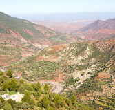 Dades valley in atlas  africa ground tree  and nobody Royalty Free Stock Photos